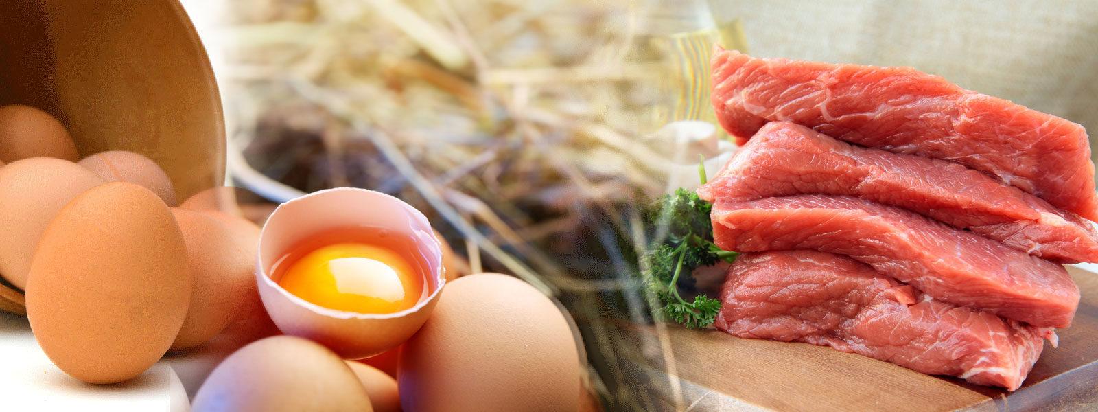 Протеин за отслабване и протеини за маса,