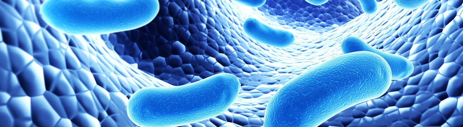 Пробиотици - спец отряда на организма
