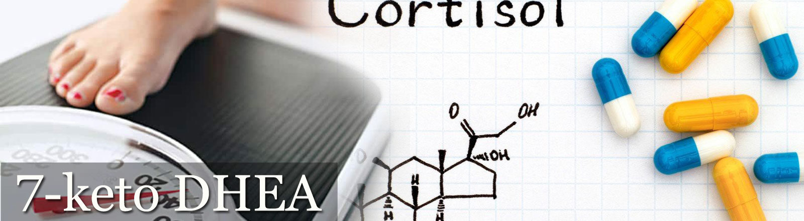 7-Keto DHEA - Контрол на кортизола при диети за отслабване